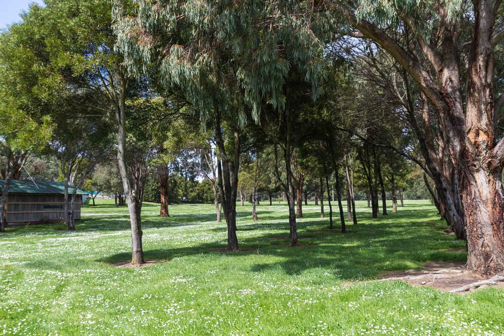 Heritage_Park-1900-3247